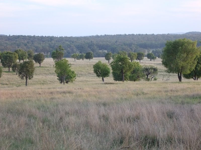 * 'MURRUMBONG', Purlewaugh NSW 2357