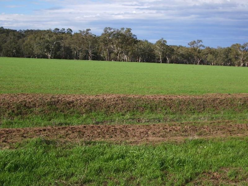 Narrandera NSW 2700