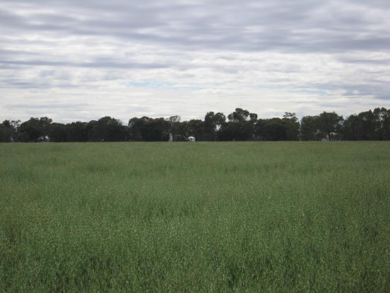 Walbundrie NSW 2642