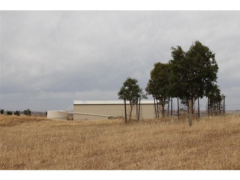 118 Koop Creek Road, Springton SA 5235