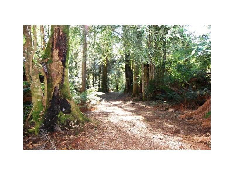 Bogan Gap Road, Golden Valley TAS 7304