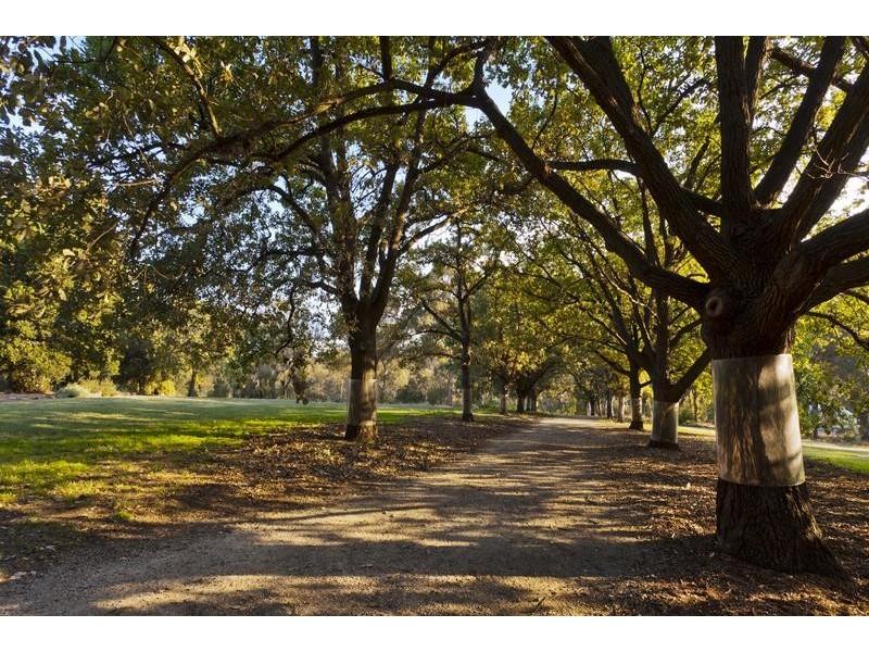 Kew VIC 3101