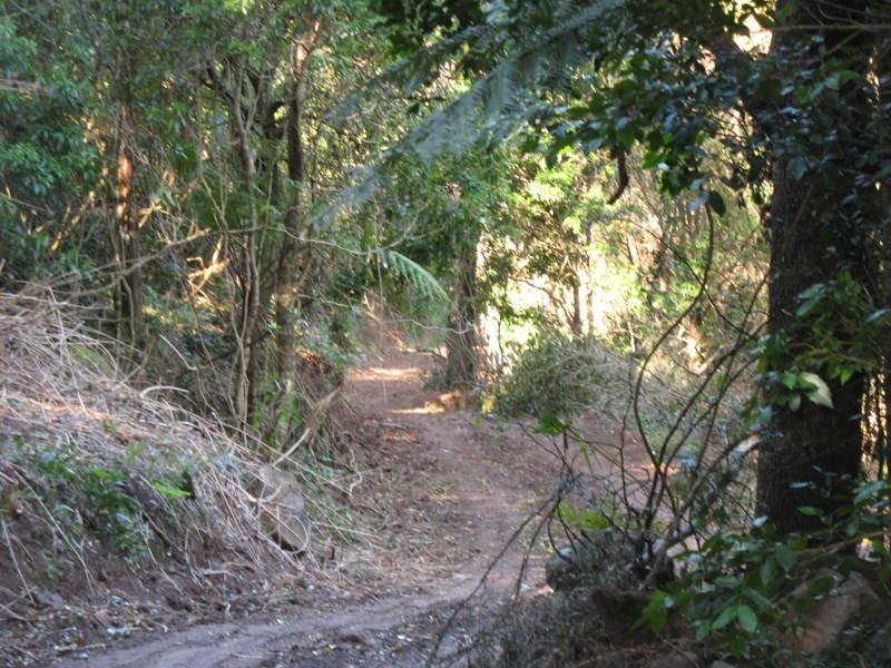 Reservoir Lane, Cambewarra NSW 2540