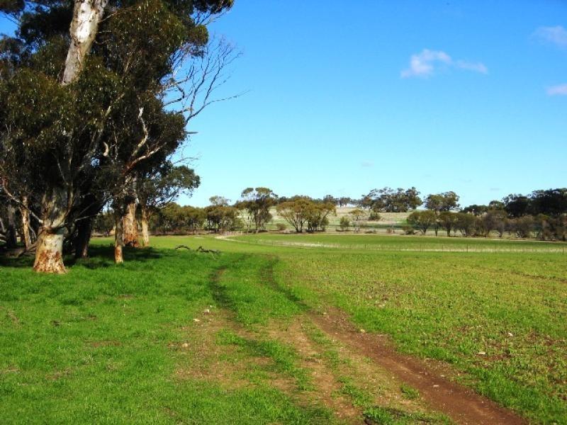 Toodyay – Goomalling Road, Toodyay WA 6566