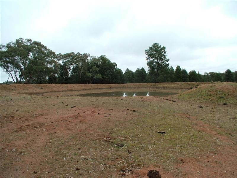 Tomingley NSW 2869